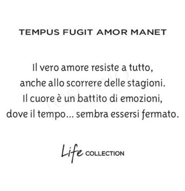 Bracciale Uomo Kidult in Acciaio e Occhio di Tigre  Tempus – Love – 731400